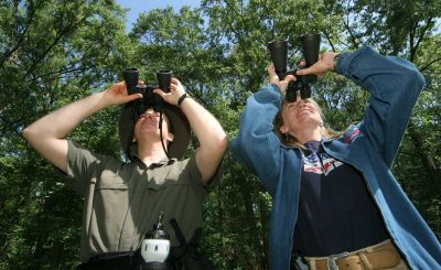 Zeiss Marine Binoculars - Great Gear For Bird Watchers
