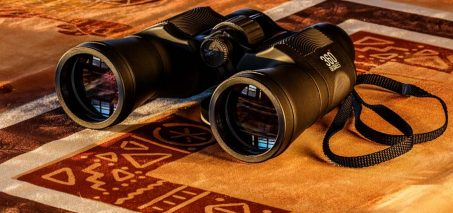 Sports Optics – Image Stabilized Binoculars