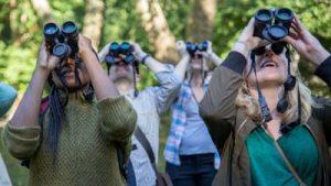 Tasco Essential Binoculars specs