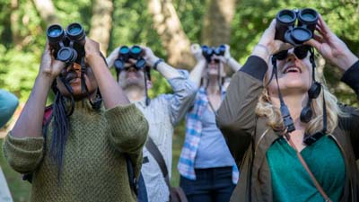 Binocular Basics for Bird Watching