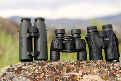 Do you know what you need in a pair of bird watching binoculars?