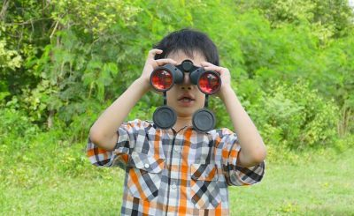 Steiner Binoculars – Whatever You Want